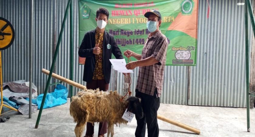 Pengurus OSIS MTsN 1 Yogyakarta Serahkan Baksos Hewan Qurban